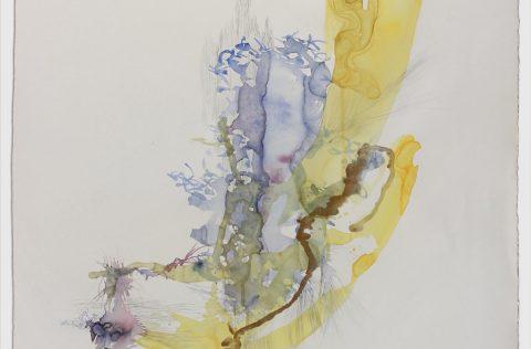 'Traslúcidos' - Acuarela y grafito s/papel 0,80 x 0,60