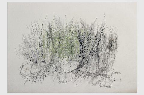 'Bosque' - Tinta y grafito s/tela 0,30 x 0,40