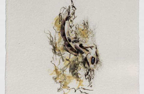 'Semillas I' - Carbonilla y collage s/papel 0,40 x 0,30