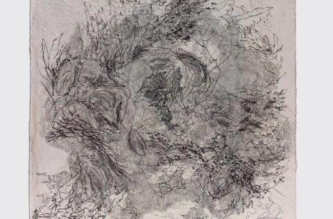 'Floresta Exótica' - Tinta, grafito s/papel artesanal 120 x 120